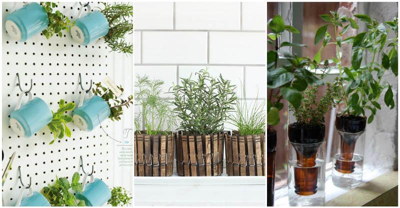 indoor-herb-gardens