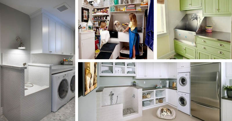 15 Well Arrange Laundry Rooms Pet Shower