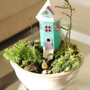 indoor-fairy-garden