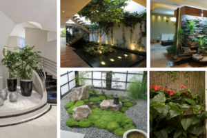 How to Make A Small But Wonderful Indoor Garden