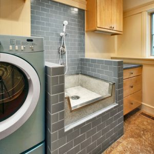 Laundry room with pet shower 2